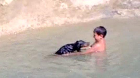 ძაღლს აბანავებს მდინარეში